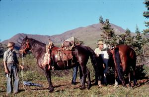 My younger brother Charles Widrig (about 13)  holding a horse loaded with sheep meat, 1977.