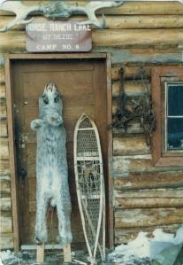Teslin snowshoes & Lynx pelt.